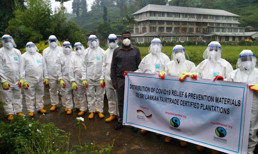 Reilun kaupan teetilan työntekijöitä valkoisissa suojavarusteissa Sri Lankassa